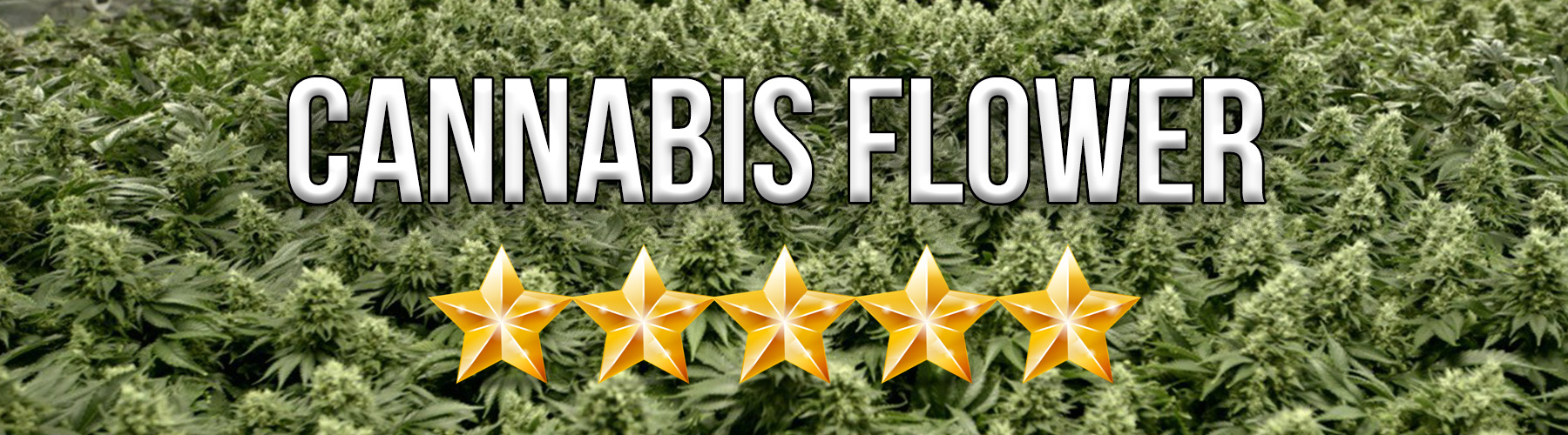 cannabis flower reviews by elev8 presents